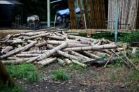 Carpenter of Bamboo