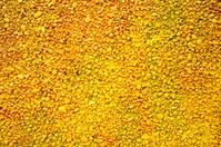 Graffiti wall of yellow