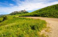 Rocky Mountain Pinnacle In Summer