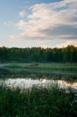 Midsummer lake Scandinavia