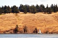 Dry Island