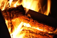 Wood burning in fire
