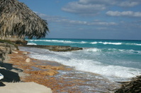 Waves crashing on  a tropical beach