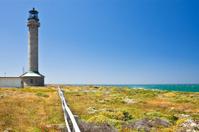 Point Arena Lighthouse, California, USA