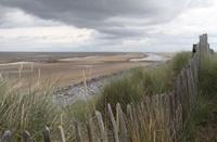 Sand dunes fence