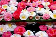 Flowers in water jar, Zen garden, Kyoto