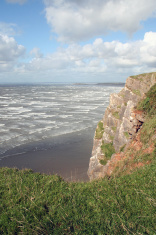Swansea Cliff