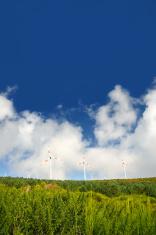 Eolic turbines - Paul de Serra, Madeira
