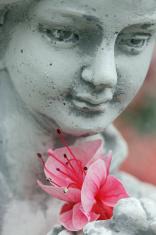 Fuchsia flower on a garden statue