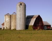 Red Barn in Grassy Field