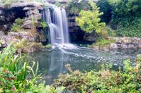 Ornamental Garden and waterfall