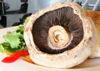 Mushroom to dine for