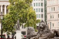 Lions of Trafalgar Square London