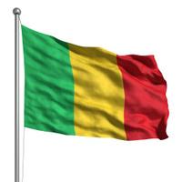 Flag of Mali (Isolated)