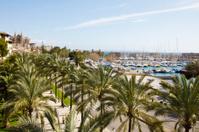 Marina in Palma de Mallorca