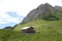 alpine hut on green pasture