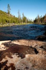 Yellowstone Zen