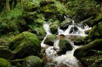 Nature Waterfall Ysperklamm lower Austria