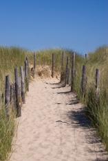 Pathway through the dunes