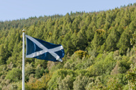 Scottish Saltire and lush green trees.