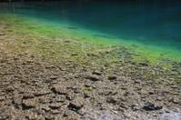 Grassy Lakes Alberta