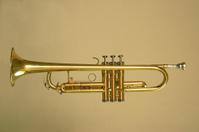 Trumpet Profile 2