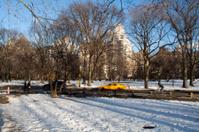 Taxi going through Central park