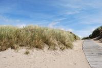 Path through sand dunes