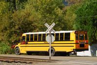 Bus at Crossing