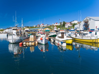 Icelandic harbor with fishing boats