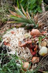 Asparagus waste