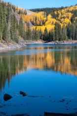 Golden Aspens at Mesa Lakes