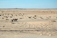 Crossing desert