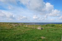Meadow near ocean