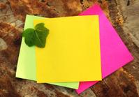 Coloured Notepaper