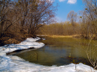 On the bank of spring river