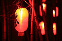 Tea lantern
