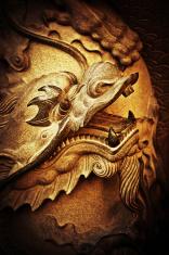 detail dragon head