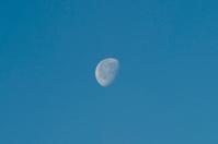 Three-quarter moon setting