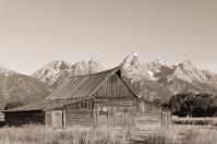 Mormon Row Moulton Barn Teton Mountains Black and White