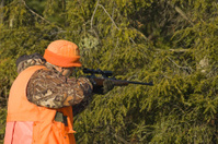 senior hunter in Autumn