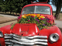 Red Pickup with Flowers