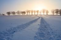 Wonderful sunset in winter