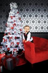 Adorable Toddler - Christmas Portraits