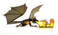 Dragon Burning Blank Sign - on white