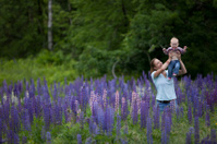 Young Mother & Daughter in Beautiful Field of Lupine Flowers