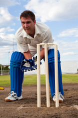 Cricket wicketkeeper