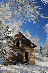 Abandoned shack in farmland with winter snow