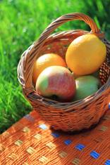 피크닉 과일 바구니 스톡 사진 - FreeImages.com