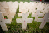 war remembrance crosses